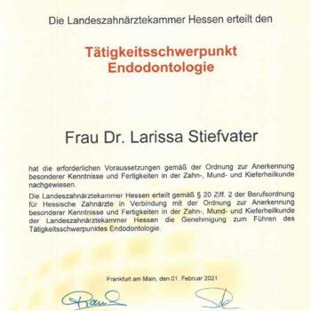Zertifikat Wurzelbehandlung (Endodontologie) von Frau Dr. Stiefvater, Zahnärztin in der Zahnarztpraxis Wellmann (Bad Homburg)